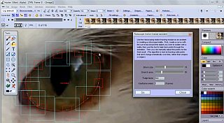 Rotoscoping a                                                   cat's eye, tracking a                                                   matte to change the                                                   eye's color